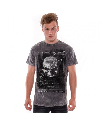 AEA Man's T-shirts   Birth of demon Arena Acero Grey